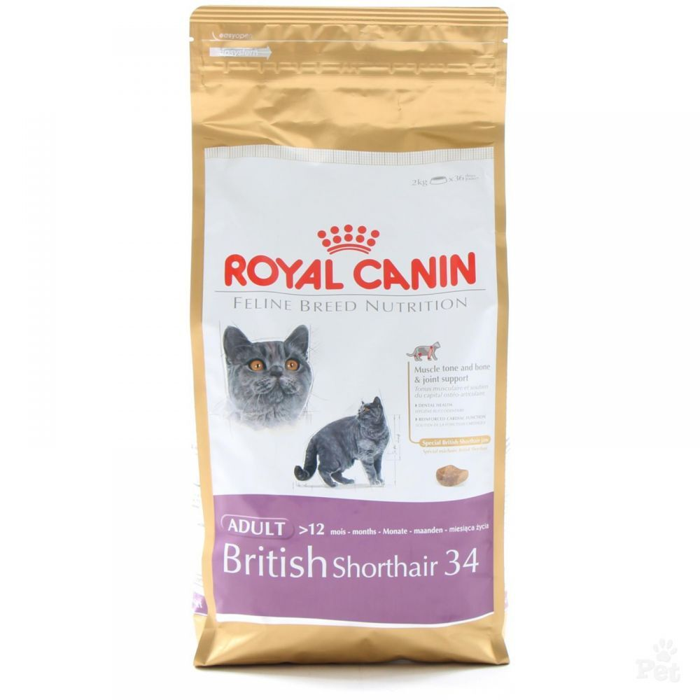royal canin british shorthair 4kg rg p. Black Bedroom Furniture Sets. Home Design Ideas
