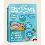 Little BigPaw Steamed Atlantic Salmon & Vegetables 150 g